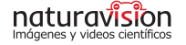 naturavision-logo-entoma-entomologia-cursos-f